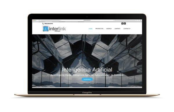 www.interlinksoft.net_.jpg